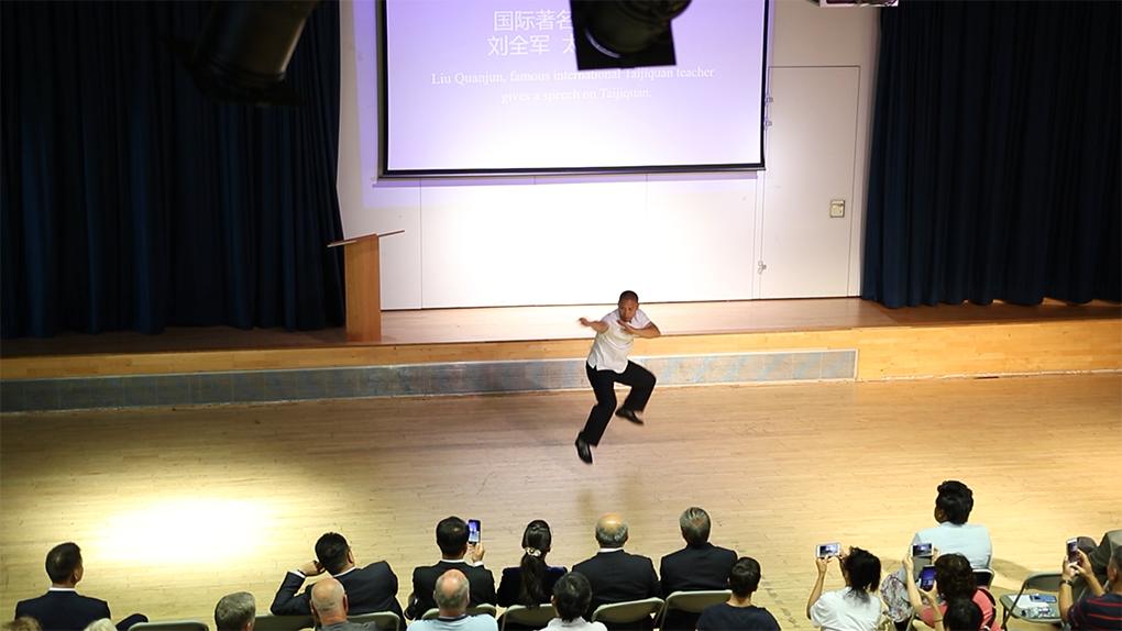 Shifu Liu's Taiji demonstration